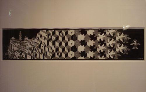 Escher for Escher metamorfosi